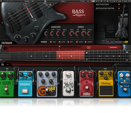 bass-slapper-9371699-20210314041557