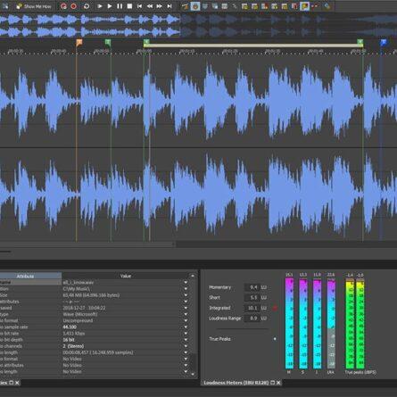 Magix-Sound-Forge-Audio-Studio-13