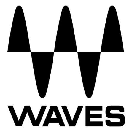 logo_waves